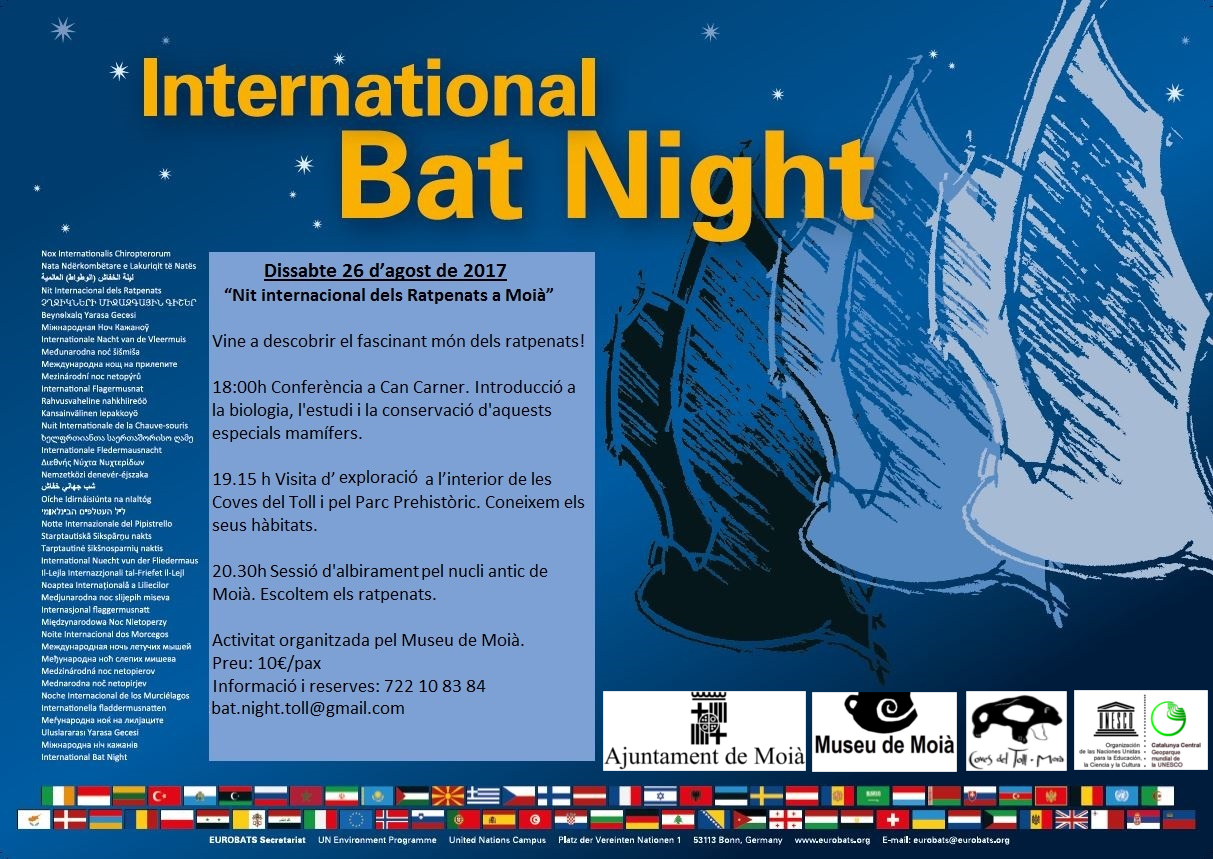 Poster Bat Night amb logos