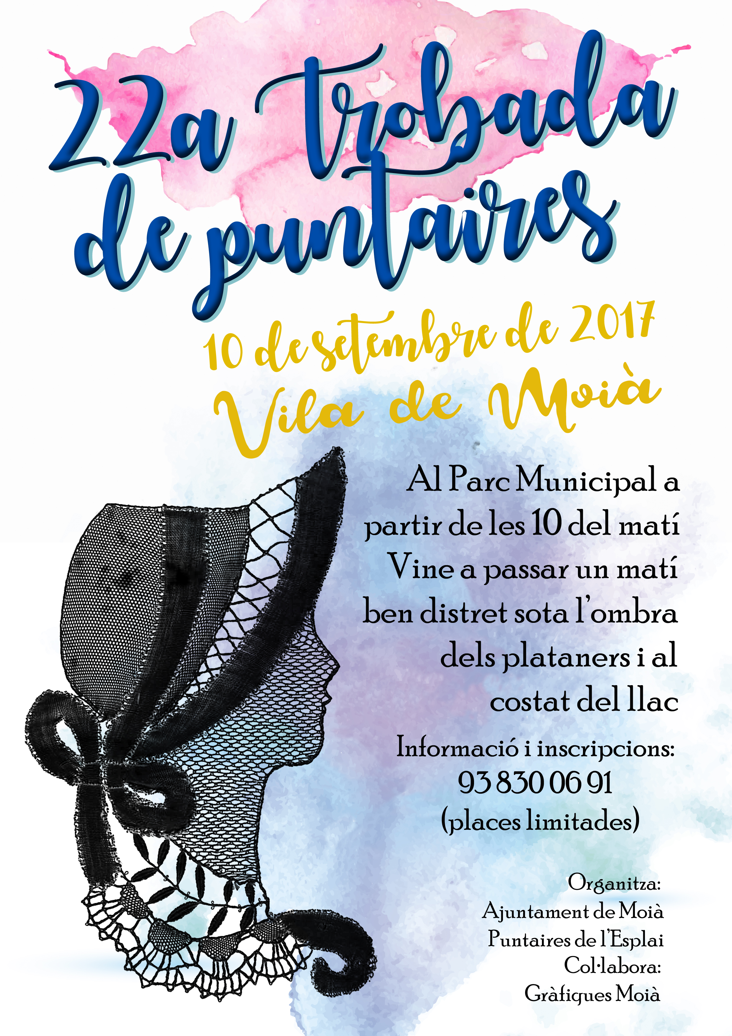 puntaires 2017